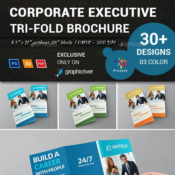 Corporate Executive Tri-Fold Brochure