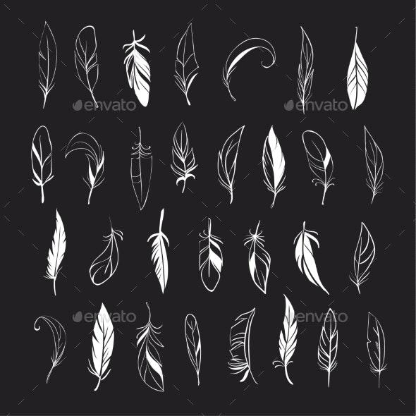 Feathers - Decorative Symbols Decorative