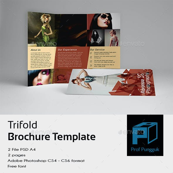 Photography Trifold Retro