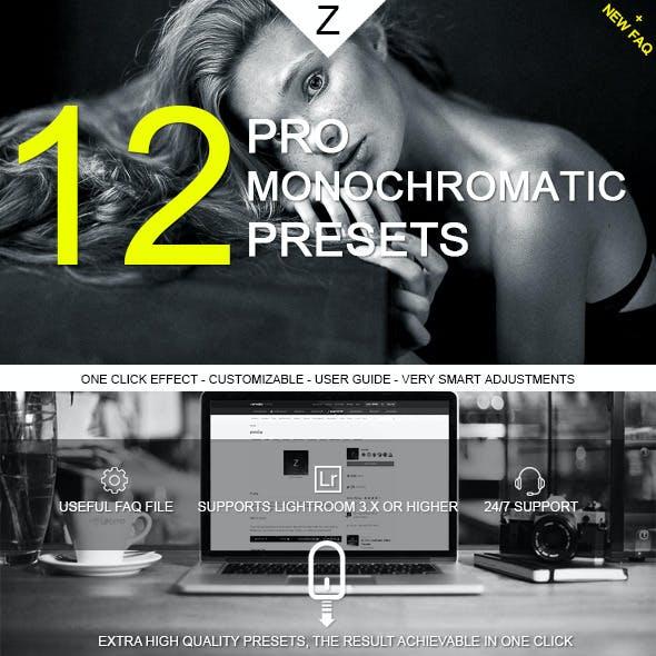12 Monochromatic Pro Presets