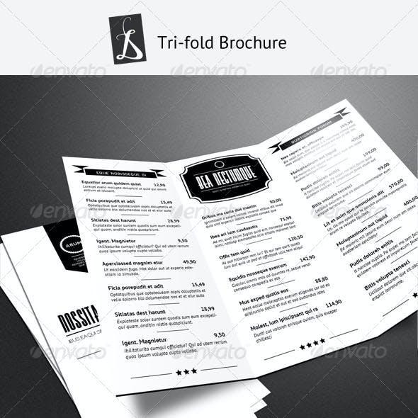 Tri-fold Brochure 2