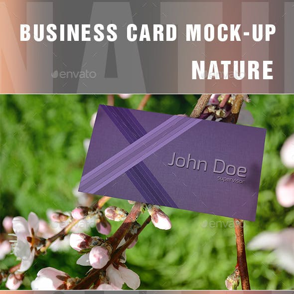 Business Card Mockups-Nature