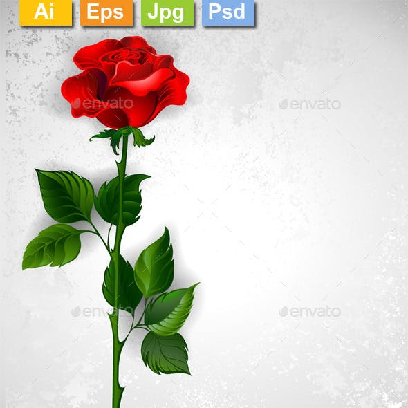 Straight Red Rose