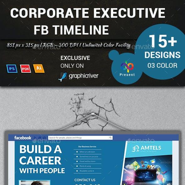 Corporate Executive FB Timeline