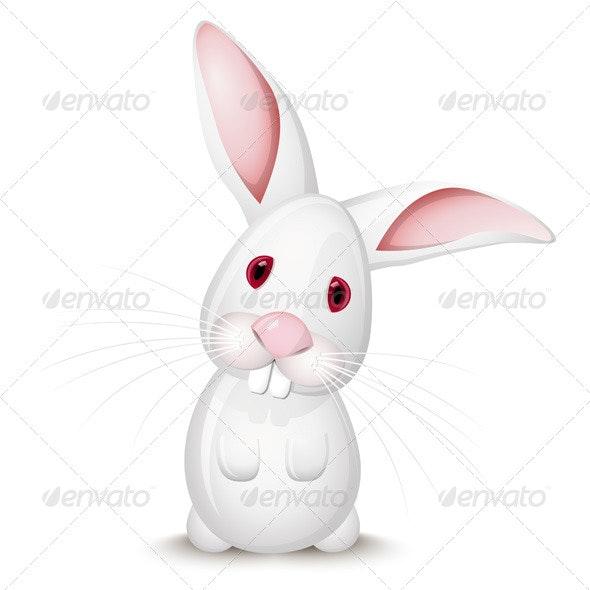 Little White Rabbit - Animals Characters