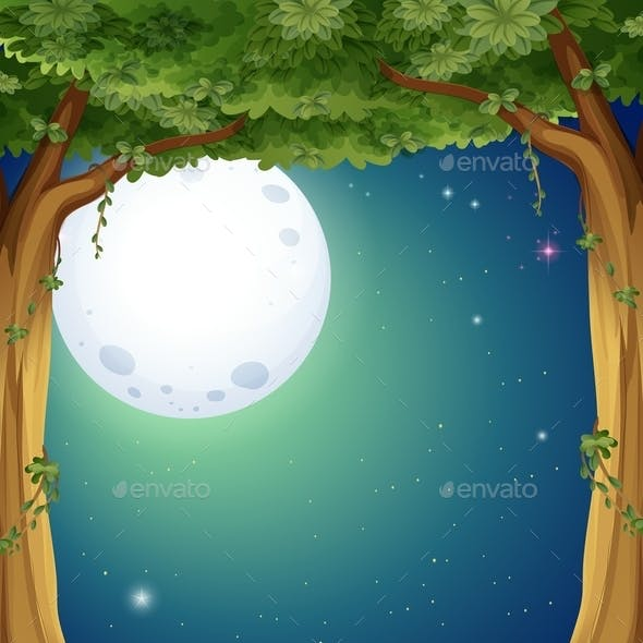 Forest and Fullmoon