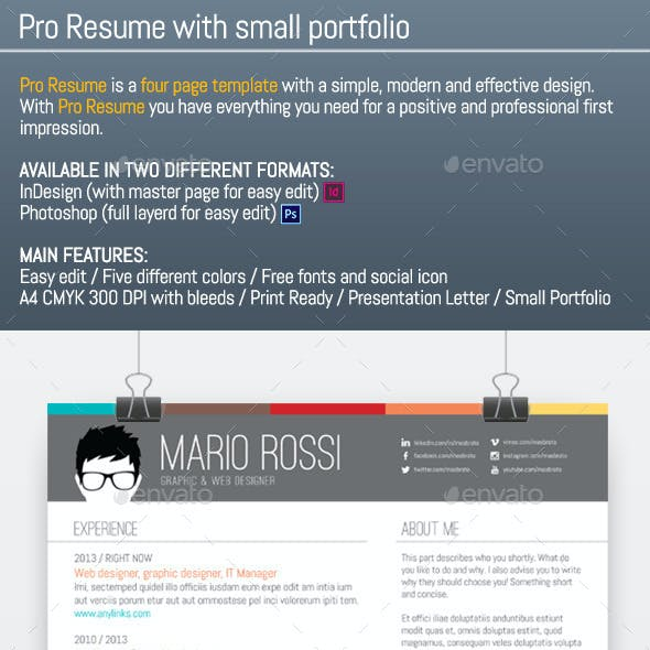 Pro Resume With Small Portfolio