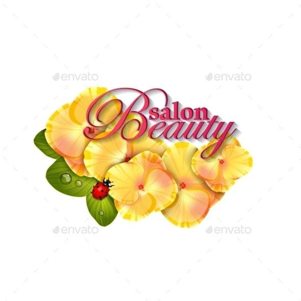 Beauty Salon Hydrangea