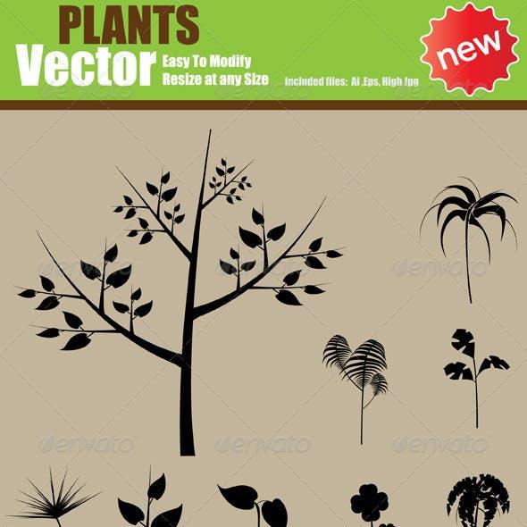 Vector Plants  Silhouette Set