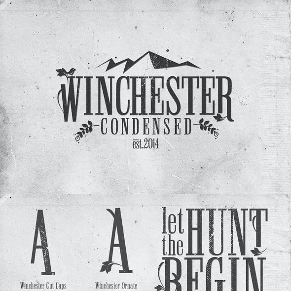 Serif Fonts from GraphicRiver