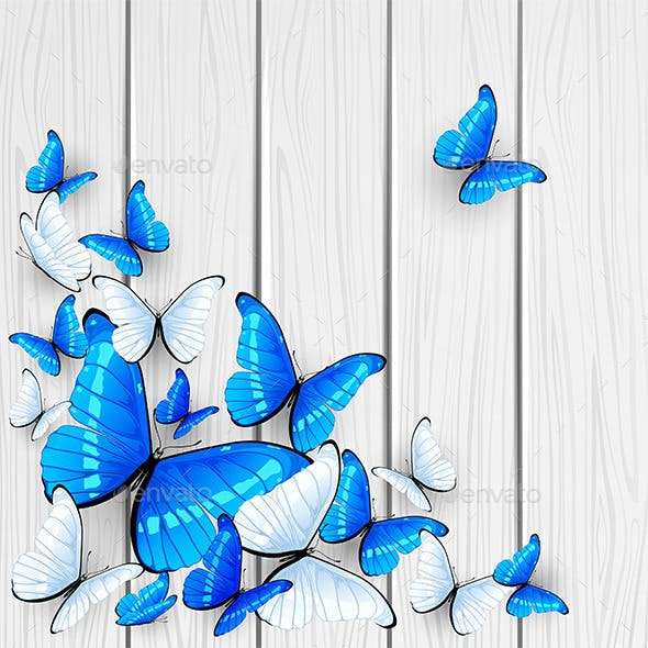 Blue Butterflies on Wooden Background