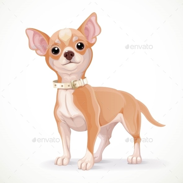 Cute Little Chihuahua Dog Vector Illustration - Animals Characters