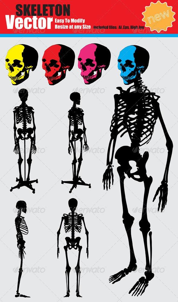 Vector Skeleton Silhouette Set - Health/Medicine Conceptual