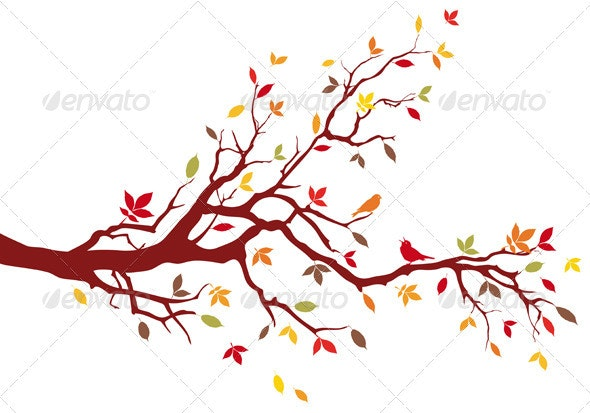 Autumn Tree Branch - Seasons Nature