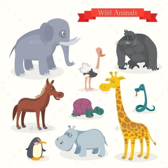 Animal Cartoons, Safari, Wild Nature