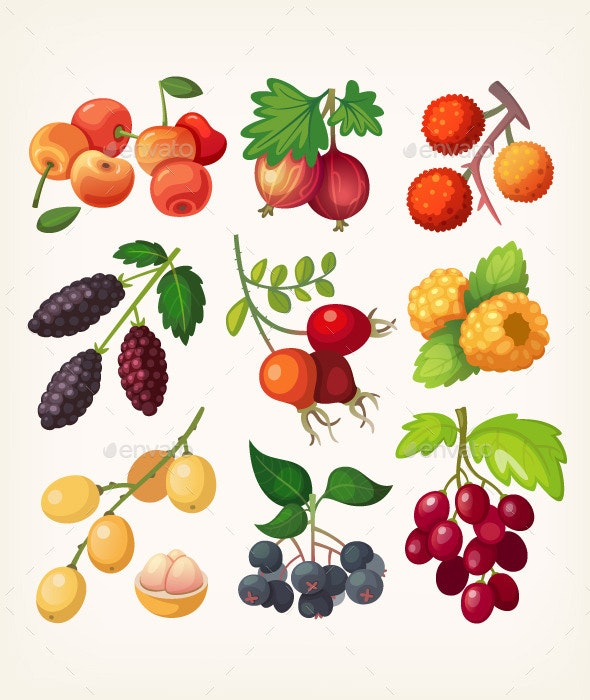 Juicy Colorful Berry Icons - Organic Objects Objects