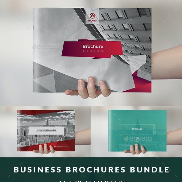 Multipurpose Business Catalog / Brochure Bundle