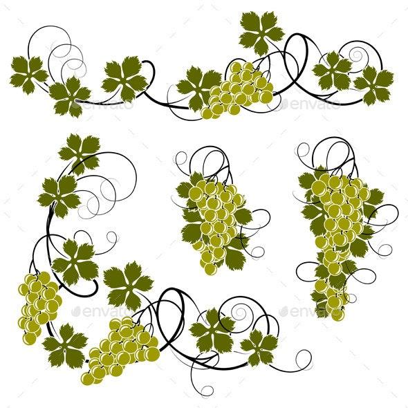 Grape Vines - Organic Objects Objects