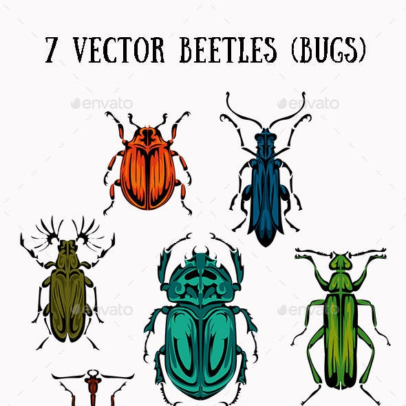 Seven Beetles and Bugs