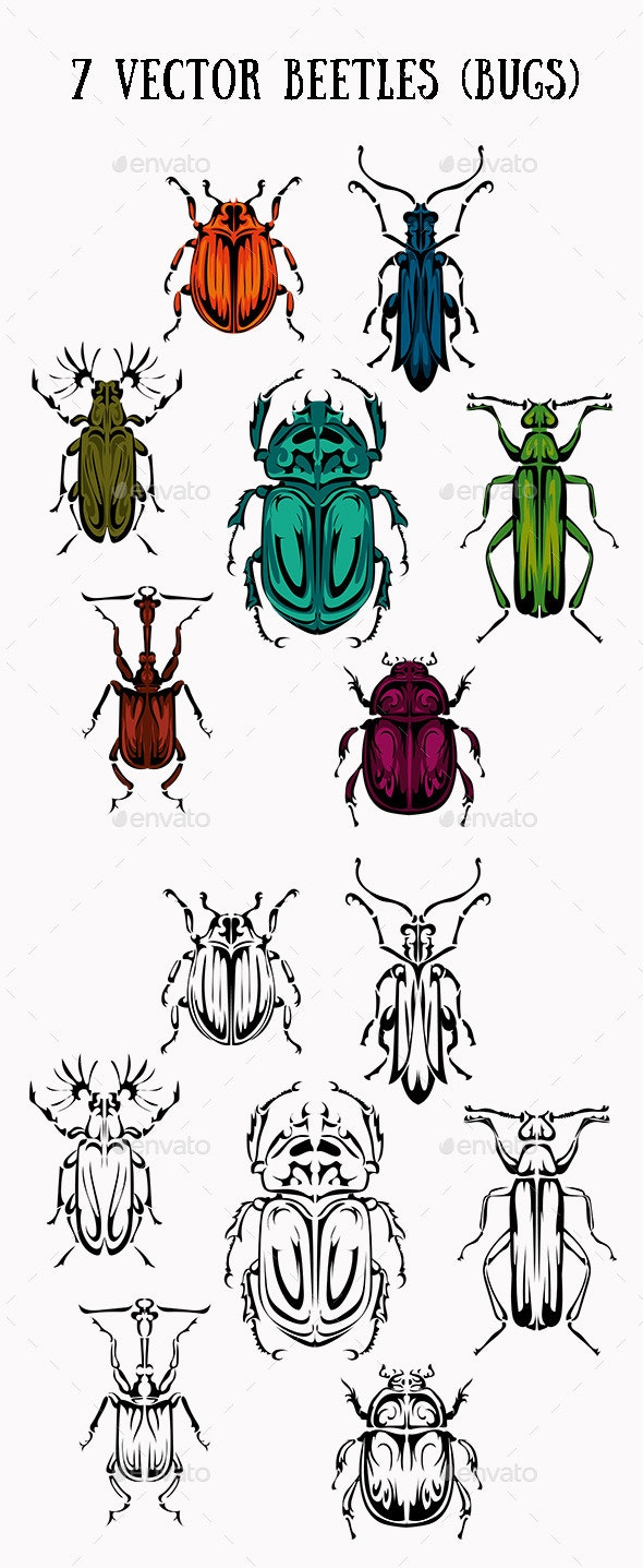 Seven Beetles and Bugs - Animals Characters