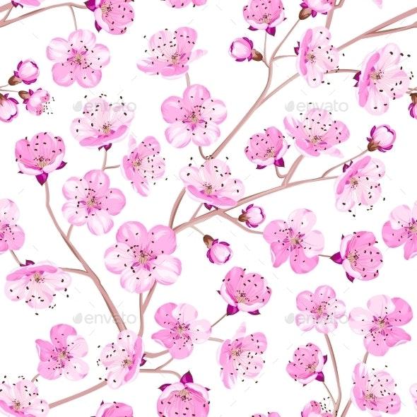 Spring Flowers Wallpaper - Flowers & Plants Nature
