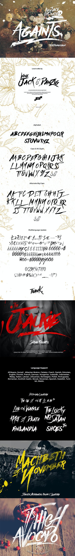 Againts Typeface - Script Fonts