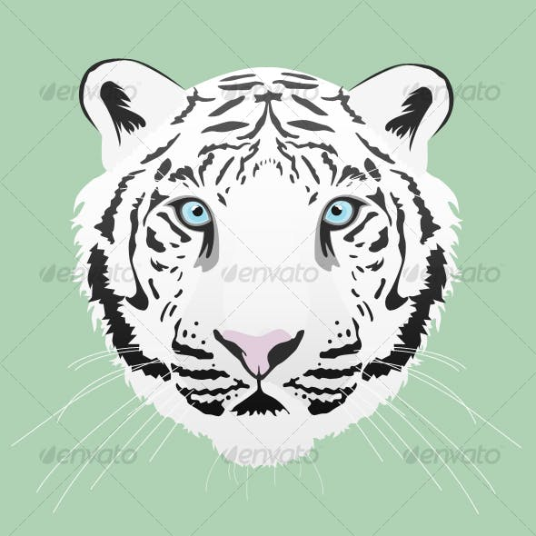 White Tiger Illustration