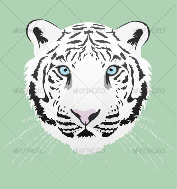White Tiger Illustration - Animals Illustrations