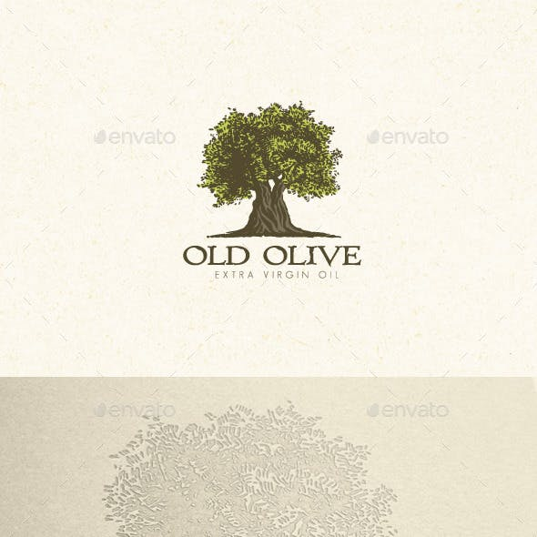 Olive Tree Organic Oil Nature Eco Logo Concept