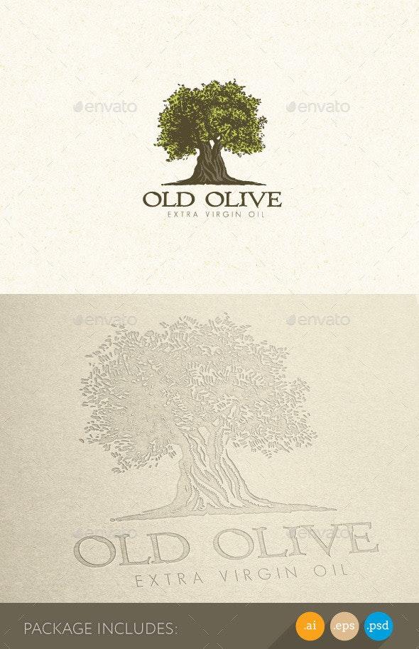 Olive Tree Organic Oil Nature Eco Logo Concept - Nature Logo Templates