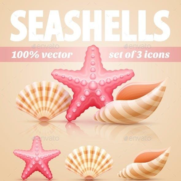 Set of Summer Sea Shells and Starfish Icons