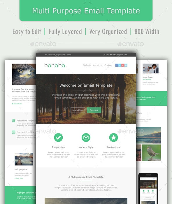 Bonobo - Multipurpose Email Template - E-newsletters Web Elements