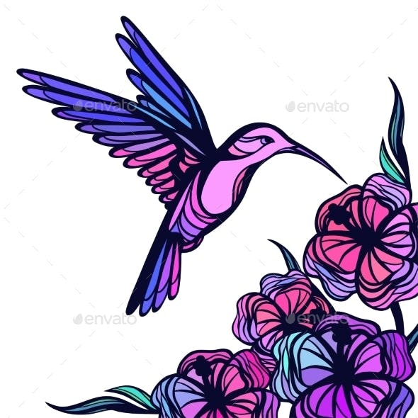 Flying Tropical Hummingbird On White Background