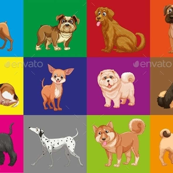 Dogs in Squares