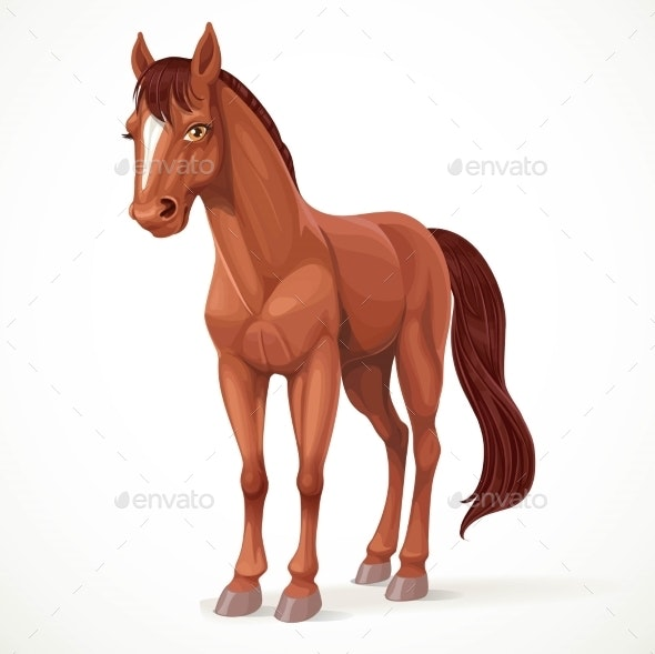 Brown Horse - Animals Characters