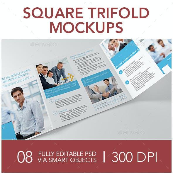 Square Trifold Mockups