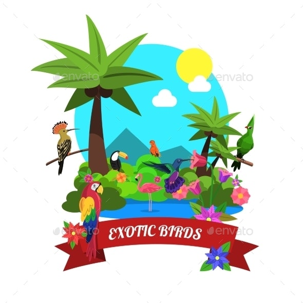 Exotic Birds Concept - Animals Characters