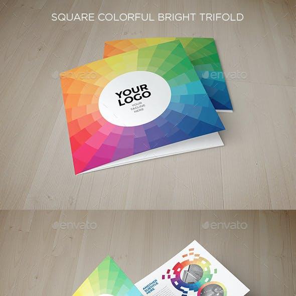 Square Colorful Bright Trifold