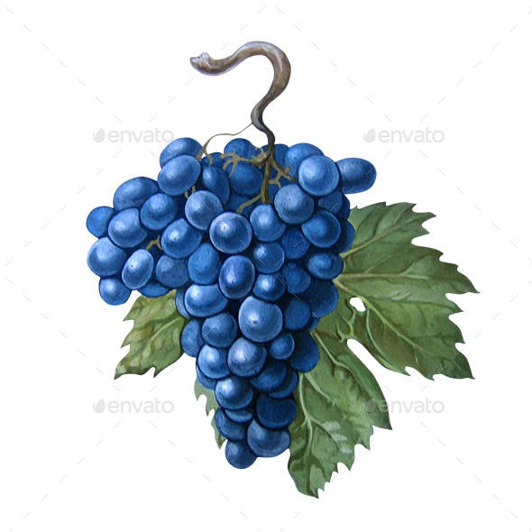 Grapes With a Leaf