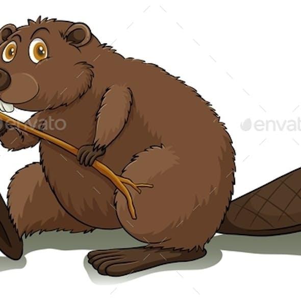 An Eager Beaver