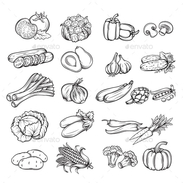 Hand Drawn Vegetable - Food Objects