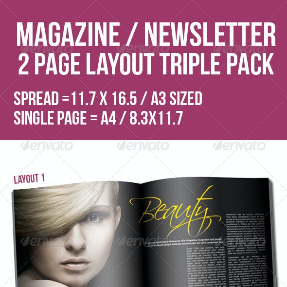 2 Page Layout Magazine /Newsletter Triple Pack