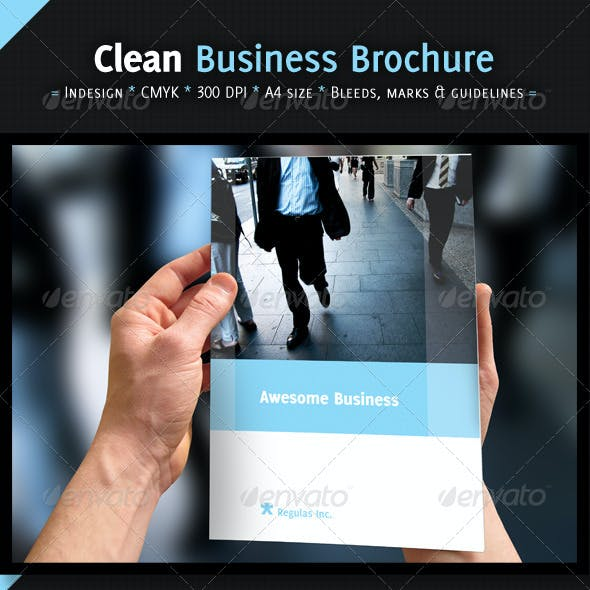 Clean Business Brochure