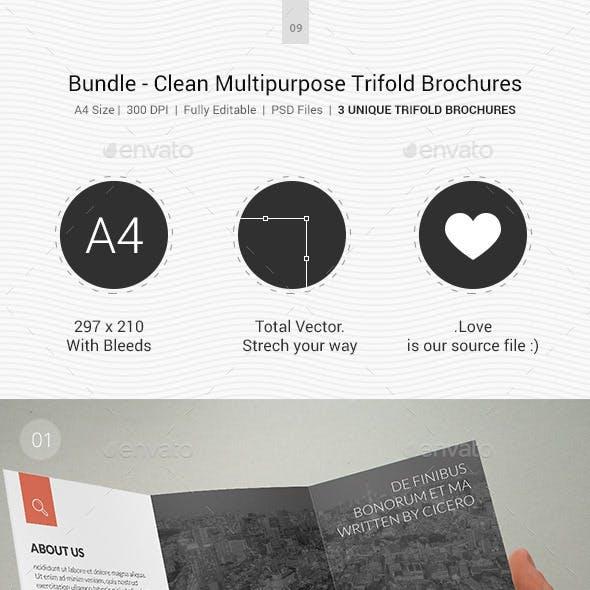 Bundle - Clean Multipurpose Trifold Brochures - 08