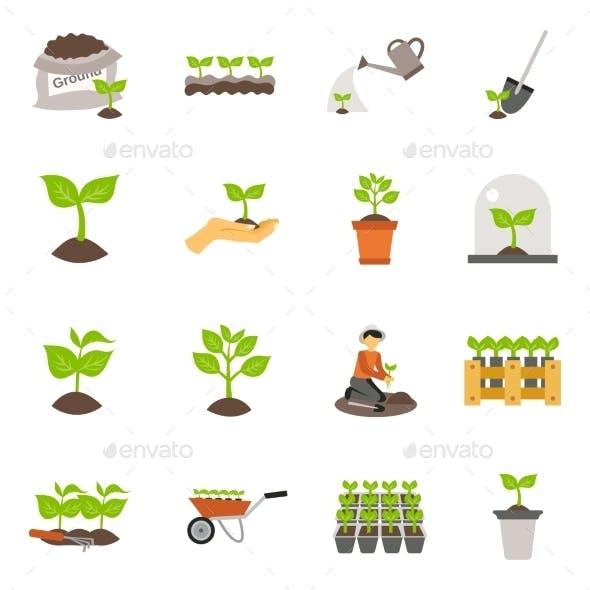 Seedling Flat Icons Set