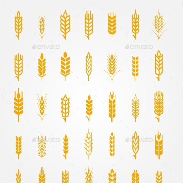 Wheat Ears Icons Set