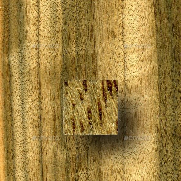 Australian Walnut Wood Texture