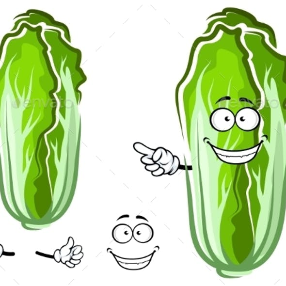 Cartoon Green Chinese Cabbage Vegetable