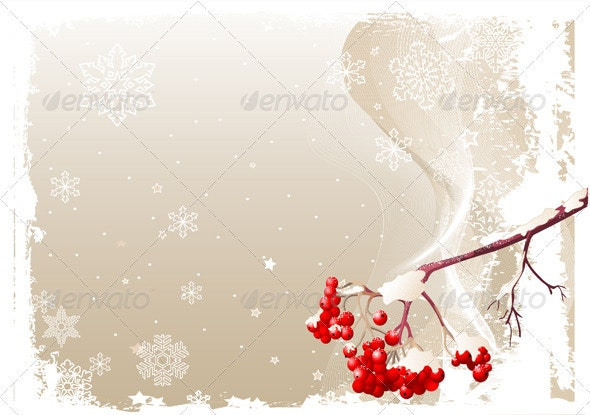 Ash Tree Branch Winter Background - Flowers & Plants Nature