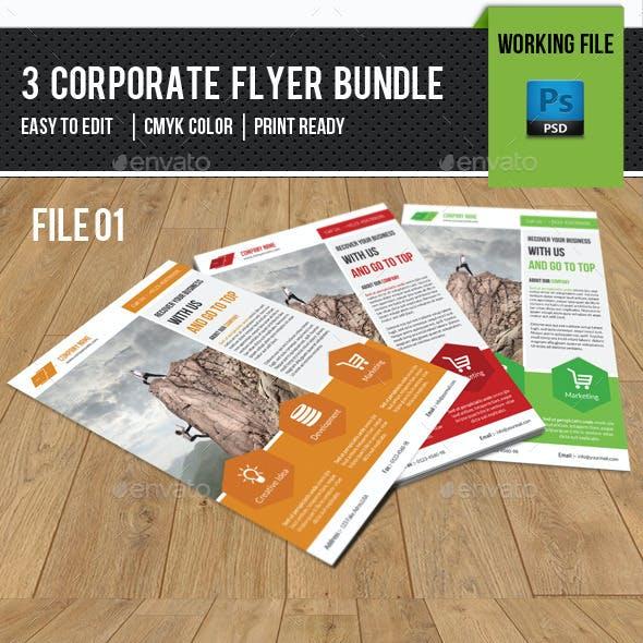 3 in 1 Corporate Flyer Bundle-V06